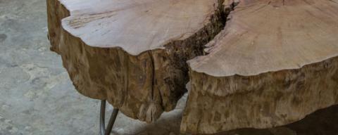 Unieke houtcreaties
